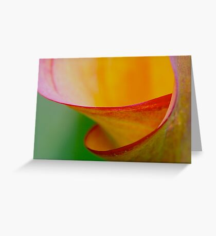 colour spiral Greeting Card