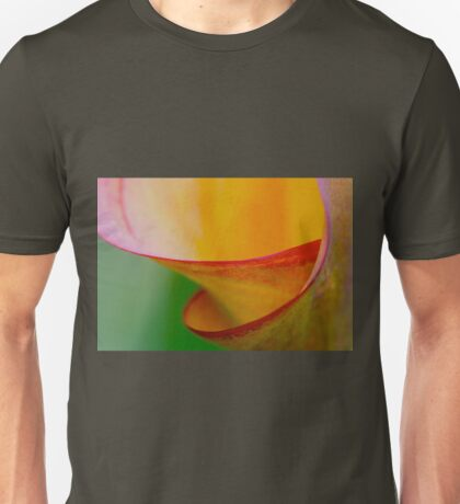 colour spiral T-Shirt