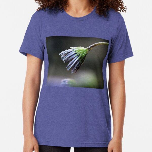 Frosty Petals Tri-blend T-Shirt
