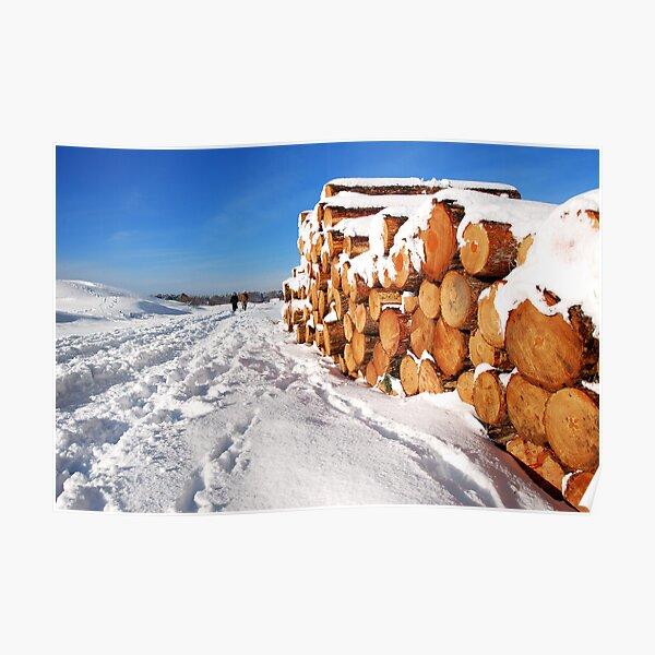 Snowy Schouwen Poster