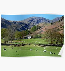 Deepdale Valley in The English Lake District Poster