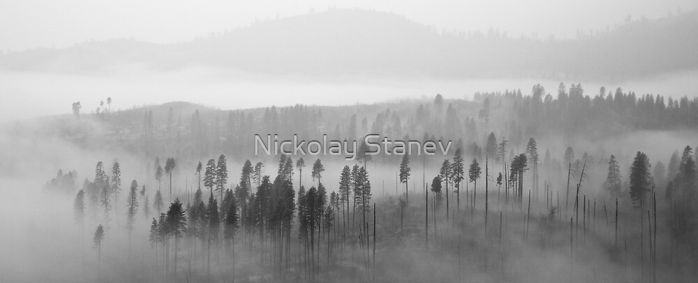 Fog on the Mountain by Nickolay Stanev