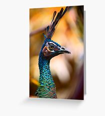 Perfectly poised and proud Peacock with plumage aplenty posing for pictures in profile Greeting Card