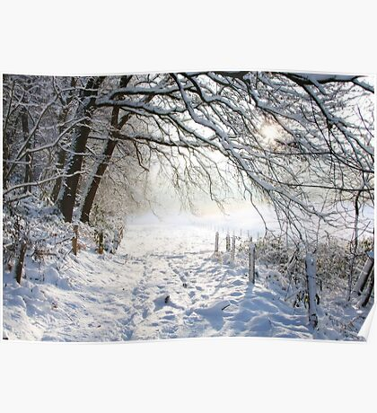 Winter path.... Poster