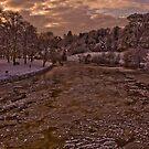 Shrewsbury Quarry by Andy Cork