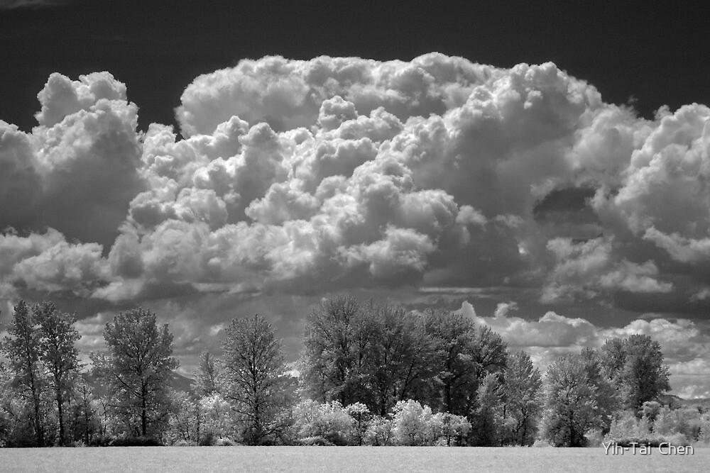 Summer Clouds - Irish Bend by Yih-Tai  Chen