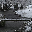 Le Chaboussant en hiver by Pamela Jayne Smith