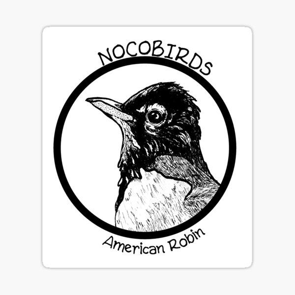 American Robin Sticker