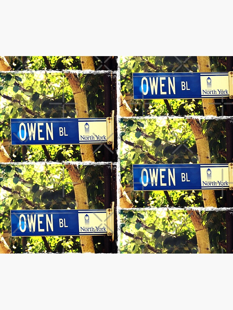 Owen, street sign, Gift for Owen  by PicsByMi