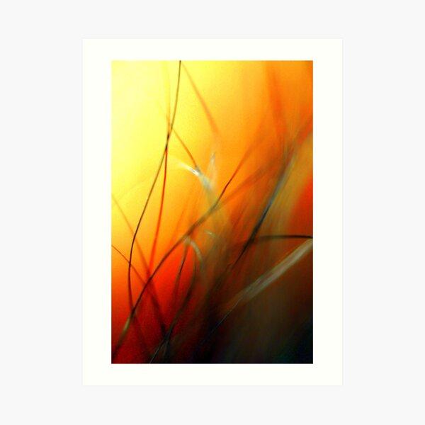 Sun Mist Art Print