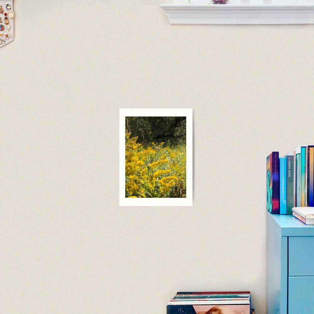 Yellow, Yellow flowers Art Print