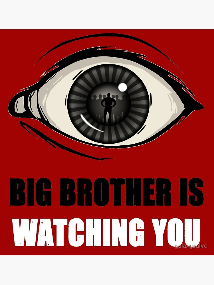 Big Brother Is Watching You by galaxysalvo