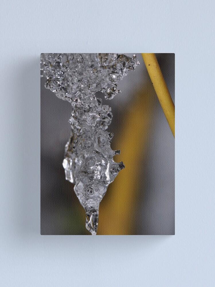 Alternate view of Ice Chrysalis Canvas Print