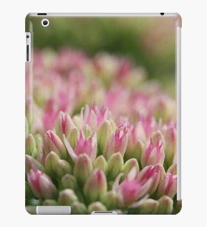 Sedum iPad Case/Skin