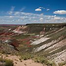 The Painted Desert by David F Putnam