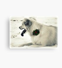 Broach for Christmas Canvas Print
