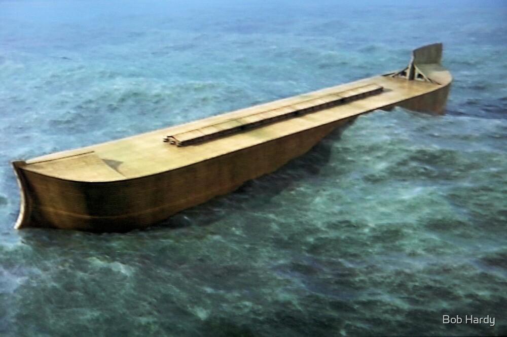 Ark of Safety by Bob Hardy