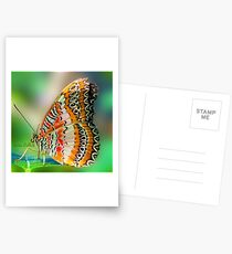 Butterfly at Rest Postcards