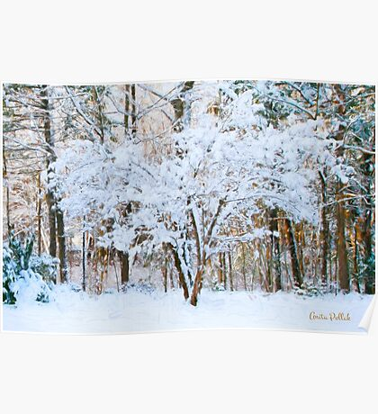 Siebold Viburnum in the Snow Poster
