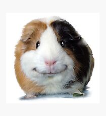 Keep Smiling with Angeelo the Guinea Pig! Photographic Print
