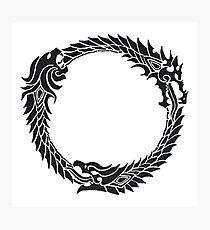 The Elder Scrolls logo Photographic Print