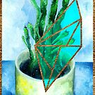 House Plants - Cactus by ideateandcreate