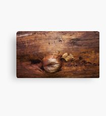 wood life Canvas Print