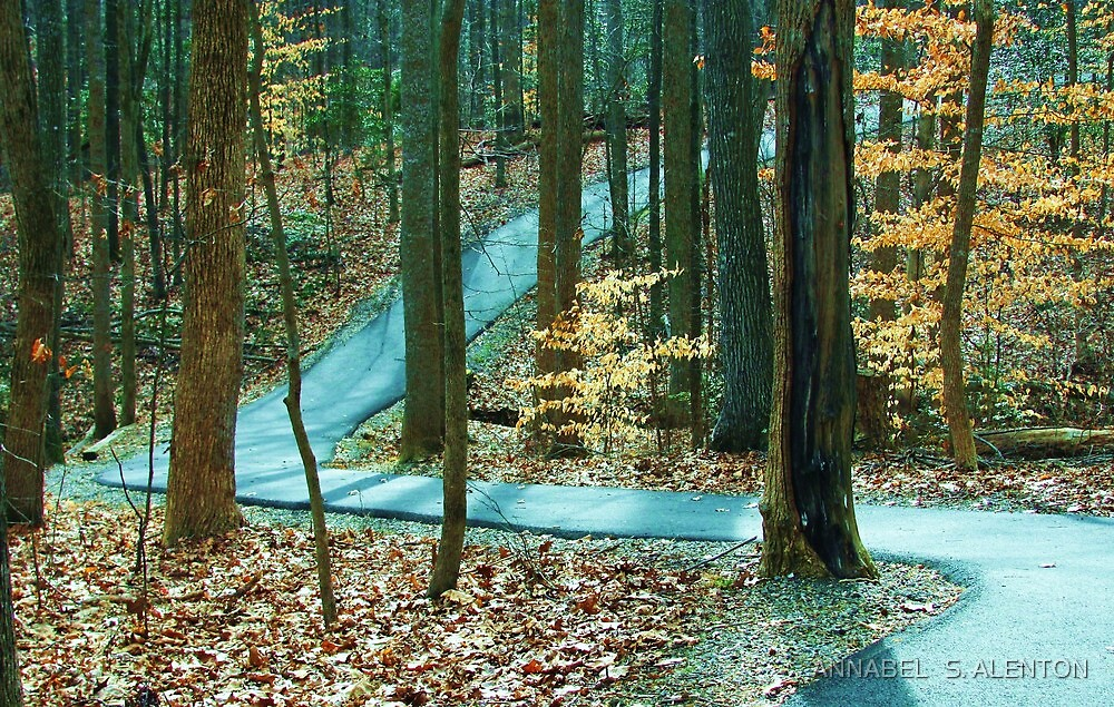 winding trail by ANNABEL   S. ALENTON