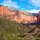 Kolob Canyons Panorama by Nickolay Stanev