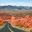 Valley of Fire Road by Nickolay Stanev