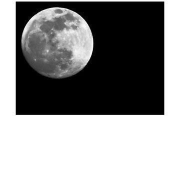 La Luna by ToriSkye