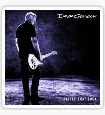 David Gilmour Tour 2020.David Gilmour Tour Stickers Redbubble