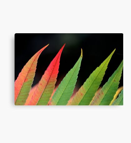 green flames Canvas Print
