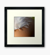 signed shell Framed Print