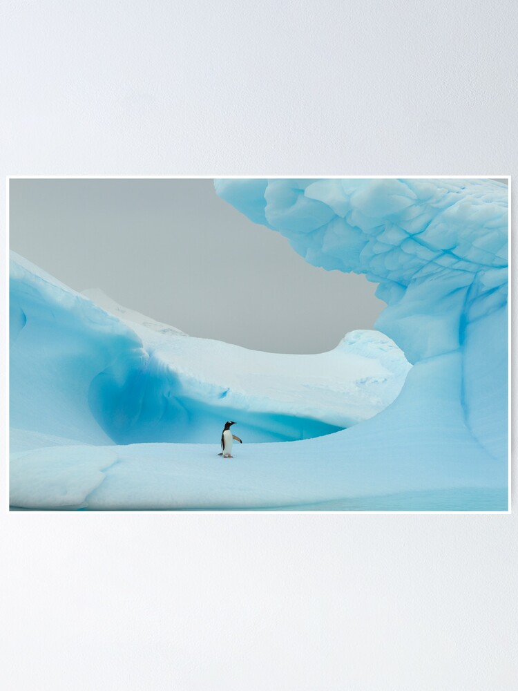 Alternate view of All alone in the ice Poster