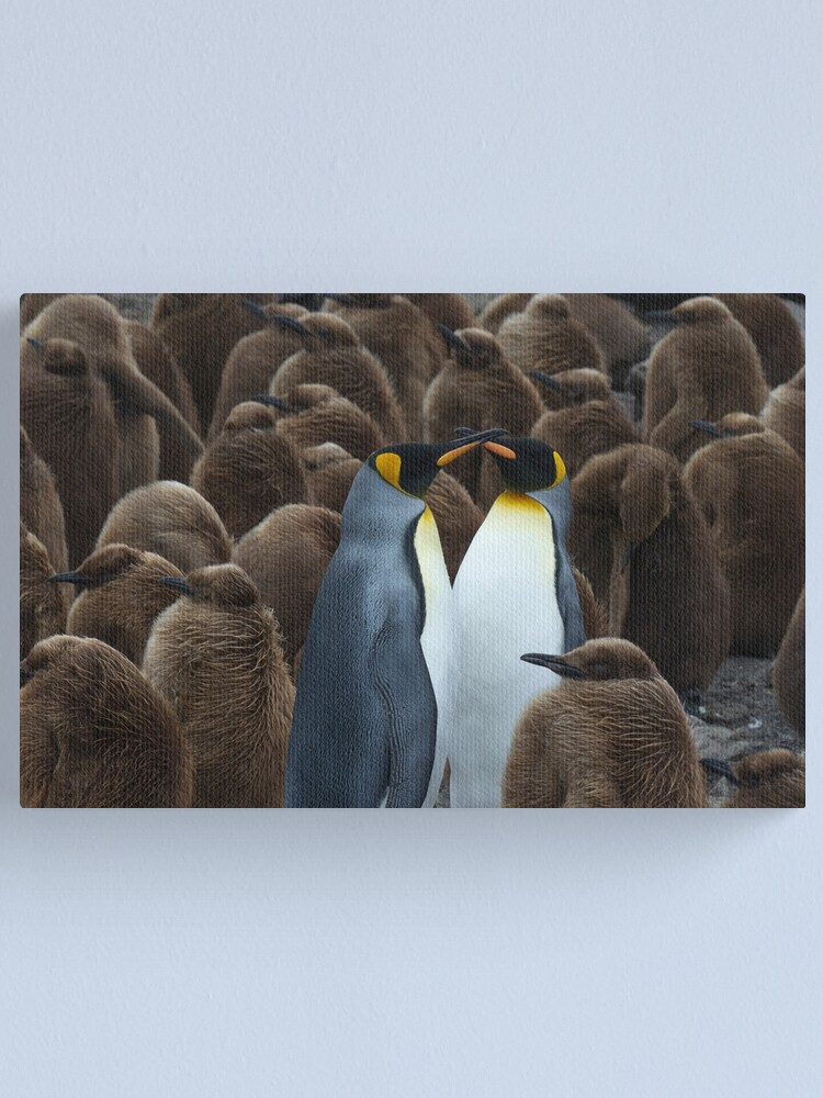 Alternate view of Kings and chicks Canvas Print