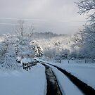 Snow Tracks by Hank Eder