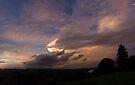 Storm Front over Terranora, 17 Dec 2010 by Odille Esmonde-Morgan