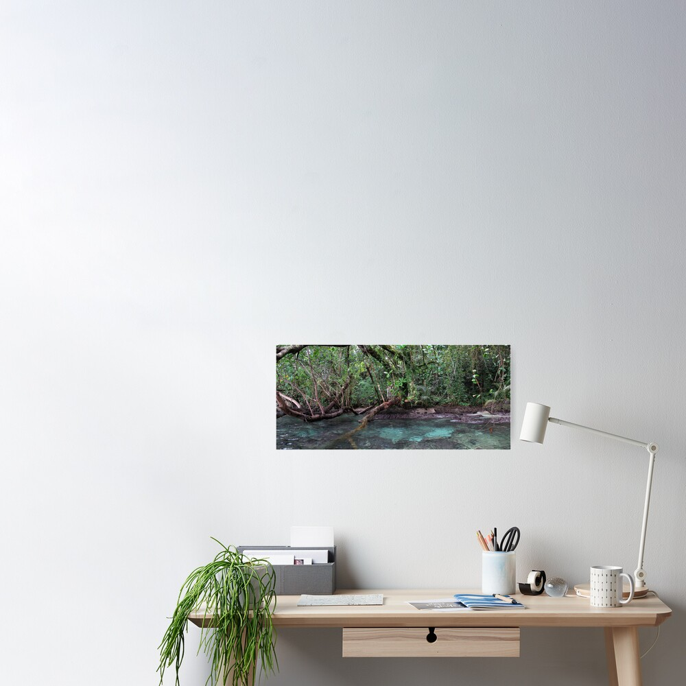 Jungle Shoreline III Poster