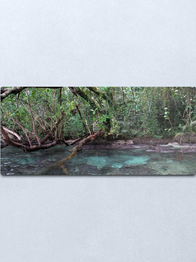 Alternate view of Jungle Shoreline III Metal Print