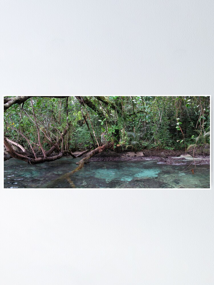 Alternate view of Jungle Shoreline III Poster