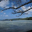 The View at Titiana Point. by Reef Ecoimages