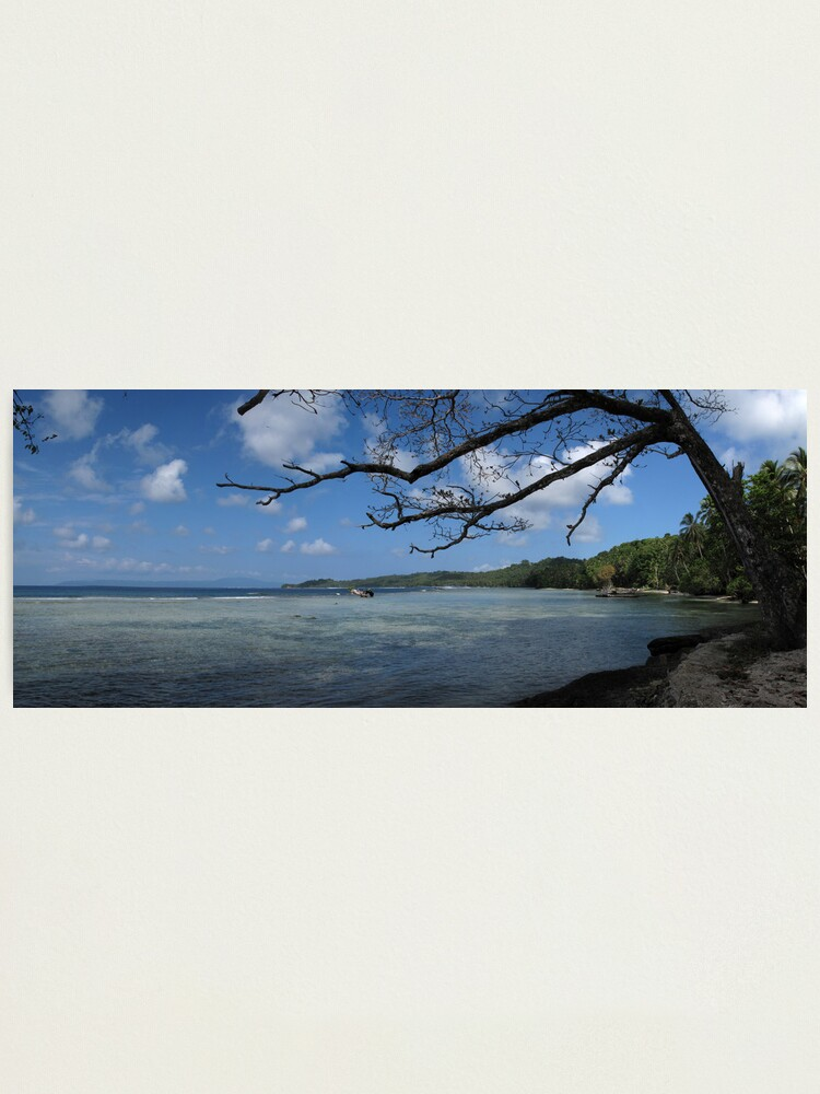 Alternate view of The View at Titiana Point. Photographic Print