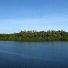 Vona Vona Lagoon by Reef Ecoimages