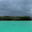 Nusaghele Green by Reef Ecoimages