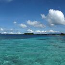 Snorkelling at Mbikiki Island by Reef Ecoimages