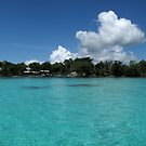 Midday at Nusatupe Island by Reef Ecoimages