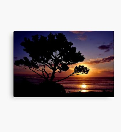 TWILIGHT~ Canvas Print
