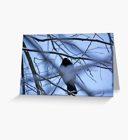 Take these broken wings and learn to fly Greeting Card