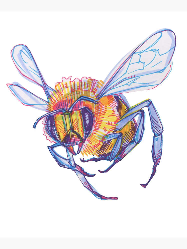 Bee drawing - 2013 by gwennpaints